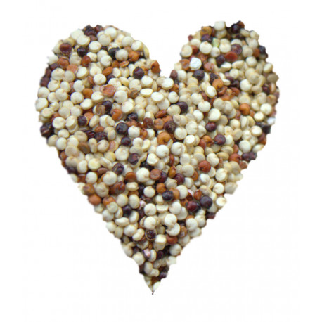 Quinoa trójkolorowa - Komosa ryżowa BIO
