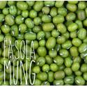 Fasola Mung BIO