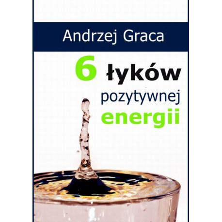 6 łyków pozytywnej energii [E-Book] [pdf]