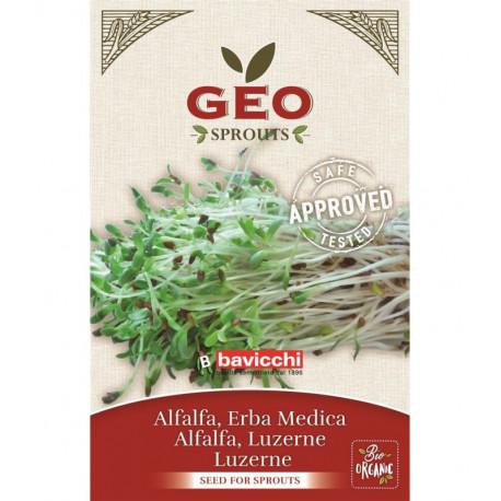 Nasiona Lucerny (do kiełkowania) 40 g BIO