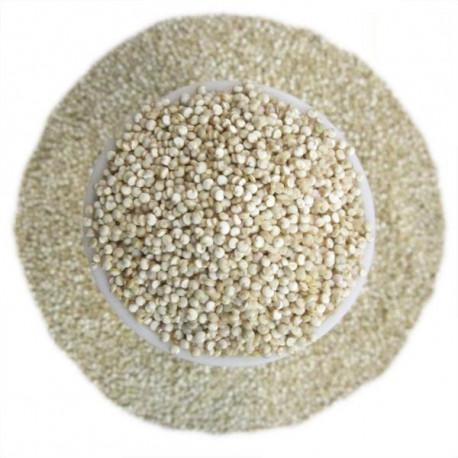 Quinoa biała - Komosa ryżowa BIO