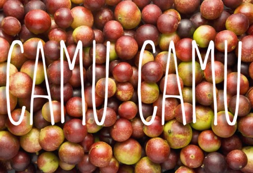 Camu camu. Superjagoda z Amazonii