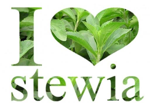 Stewia. Naturalny słodzik roślinny bez... kalorii!